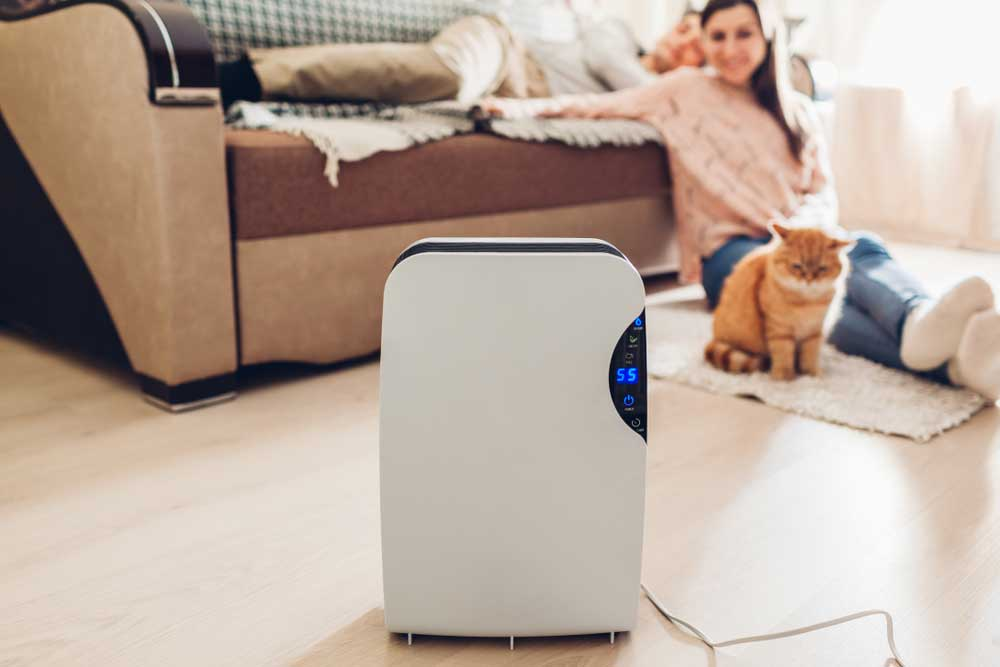 Best-air-purifier-for-home-with-pets
