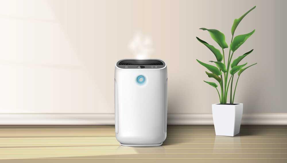 Best Energy Efficient Dehumidifiers